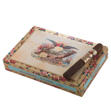 San Cristobal Revelation Legend Box of 24